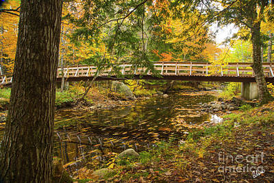 Photograph - Bridge Over A Small Stream by Alana Ranney