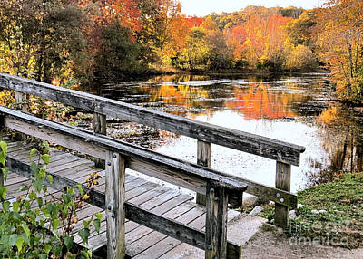 Photograph - Bridge Over Jenney Pond by Janice Drew