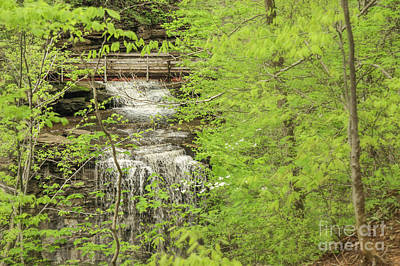 Nikki Vig Royalty-Free and Rights-Managed Images - Bridge Over Little Clifty Falls by Nikki Vig