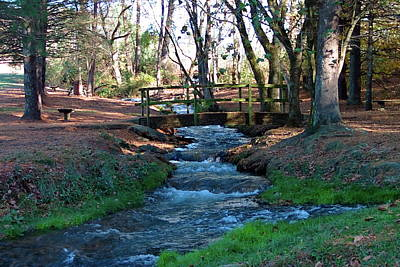Photograph - Bridge Over Peaceful Waters by Nick Kirby