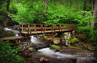 Photograph - Bridge Over Smooth Water by Eric Liller