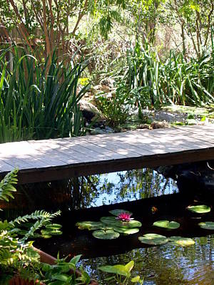 Photograph - Bridge Over The Pond Lotus by James Granberry