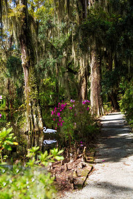 Custom Photograph - Bridge Path - Magnolia Plantation by J Darrell Hutto