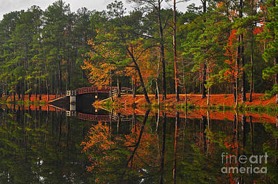 Photograph - Bridge Reflections by Randy Rogers