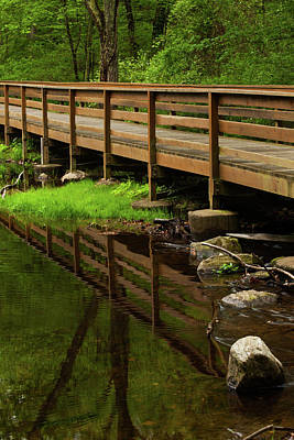 Photograph - Bridge Reflects by Karol Livote