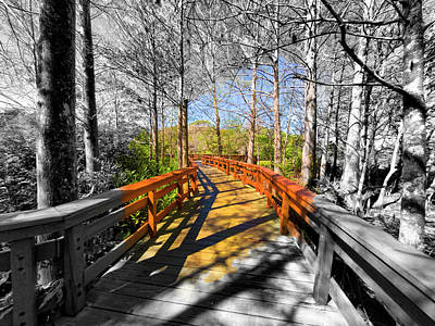 Photograph - Bridge Series Gopr2407 by Carlos Diaz