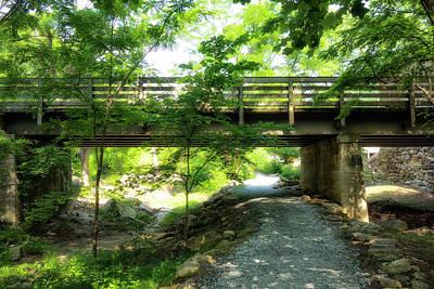 Photograph - Bridge Series Y6046 by Carlos Diaz