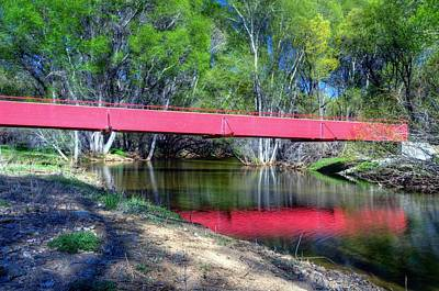 Watson Lake Photograph - Bridge Through The Woods by Thomas  Todd