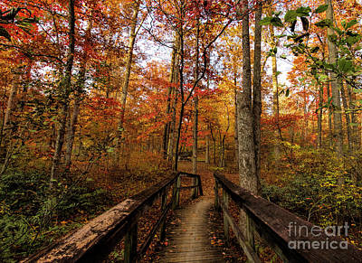 Photograph - Bridge To Enchantment by Barbara Bowen