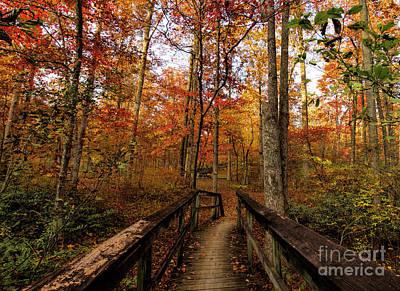 Photograph - Bridge To Enchantment by Barbara Bowen