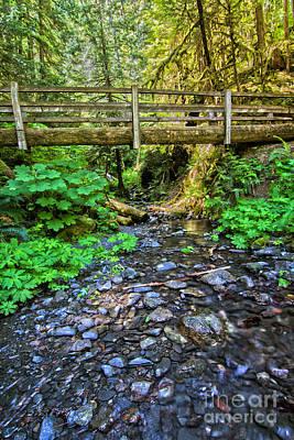 Photograph - Bridge To Merymere by Sonya Lang