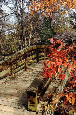 Photograph - Bridge To New Adventures by Allen Nice-Webb