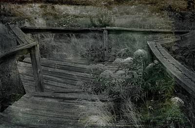 Photograph - Bridge To Nowhere by Sue McGlothlin