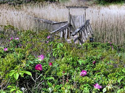 Photograph - Bridge To Plymouth Beach by Janice Drew