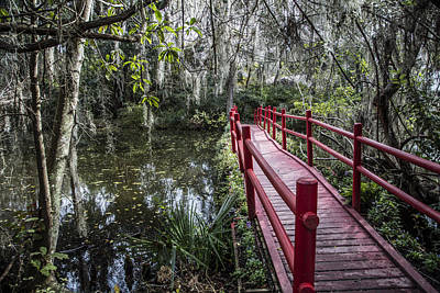Photograph - Bridge To Swamp  by John McGraw
