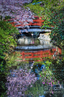 Photograph - Bridge Water Spring Reflections  by David Zanzinger