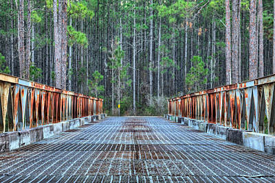 Photograph - Bridging New River by JC Findley
