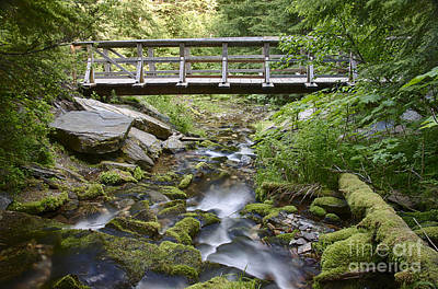 Photograph - Bridging The Creek by Idaho Scenic Images Linda Lantzy