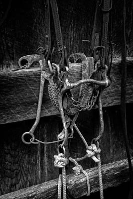 Horse Bridle Photograph - Bridle And Barn In Black And White by Greg Mimbs