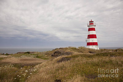 Photograph - Briers Island Lighthouse by Nick Jene