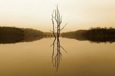 Photograph - Briery Creek  by Alan Raasch