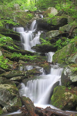 Photograph - Briggs Brook Waterfall New England National Scenic Trail by John Burk