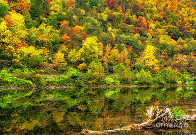 Photograph - Bright Autumn Colors by Nick Zelinsky