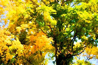 Park Painting - Bright Autumn Leaves In The Natural Environment by Lanjee Chee
