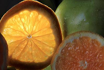 Photograph - Bright Clementine  by Angela Murdock