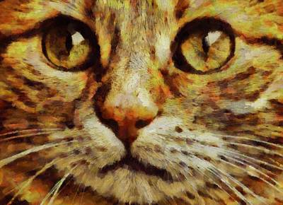Bright Eyes By Pierre Blanchard Art Print
