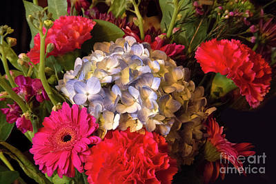 Photograph - Bright Floral by Linda Phelps