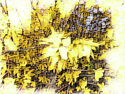 Photograph - Bright Forsythia Branch by Leslie Montgomery