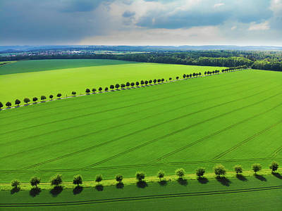 Photograph - Bright Green Landscape With Fields And Trees by Matthias Hauser
