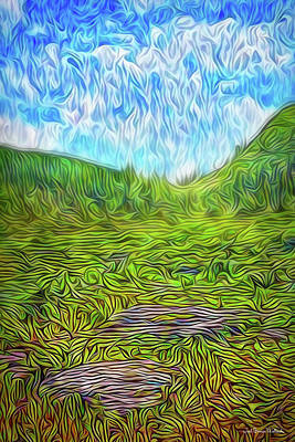 Digital Art - Bright Meadow Day by Joel Bruce Wallach