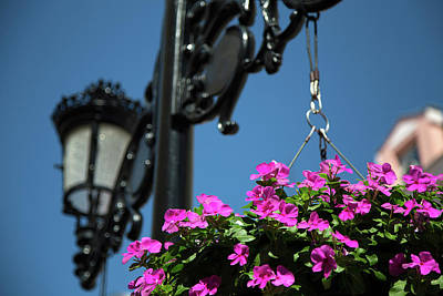 Photograph - Bright Momories From Plovdiv 1 by Milena Ilieva