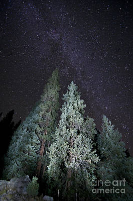 Bright Night Print by Jeff Kolker