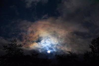 Photograph - Bright Night Skies by Kathryn Meyer