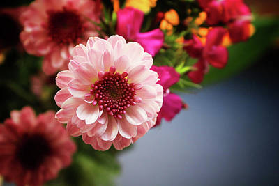 Chrysanthemum Photograph - Bright Pink Floral 2- Art By Linda Woods by Linda Woods