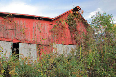 Photograph - Bright Red Barn And Blue Skies by Angela Murdock