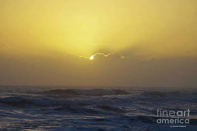 Photograph - Bright Sunrise by Tannis Baldwin