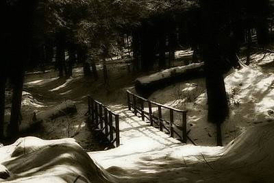 Winterscape Black And White Photograph - Brighten Your Path by Shelley Smith