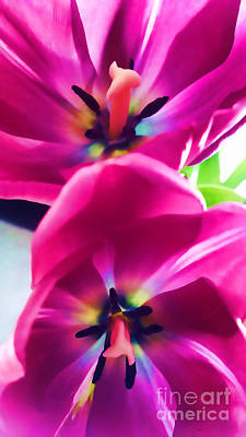 Photograph - Floral Brilliance by Roberta Byram