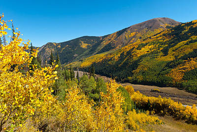 Photograph - Brilliant Colorado Autumn by Cascade Colors