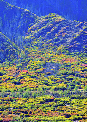Photograph - Brilliant Fall Colors Of Glenwood Springs by Ray Mathis