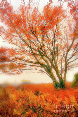 Painting - Brilliant Orange Autumn Fall Colors Tree Ap by Dan Carmichael