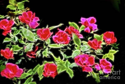 Digital Art - Brilliant Red Roses On Black by Linda Phelps