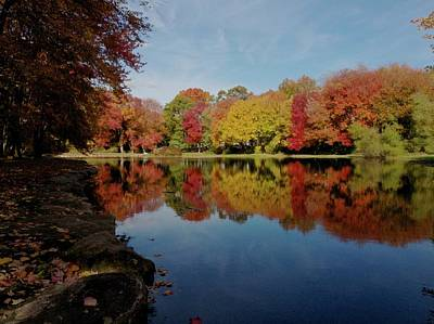 Photograph - Brilliant Reflections by Patricia McKay