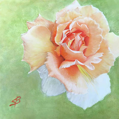 Painting - Brilliant Rose by Sharon Bignell