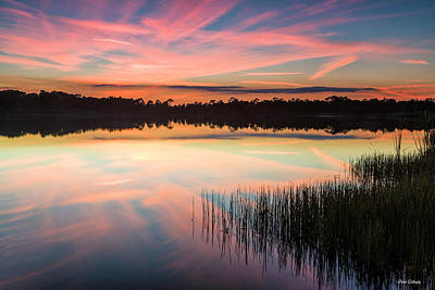 Photograph - Brilliant Sunset by Fran Gallogly