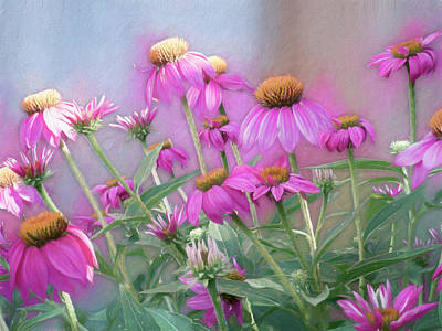 Photograph - Brilliant Wild Berry Cone Flower by Leslie Montgomery
